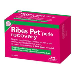RIBES PET RECOVERY 60PERLE